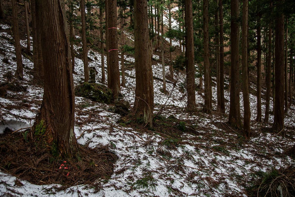 【万仏山】登山百景-石仏のある登山道へ