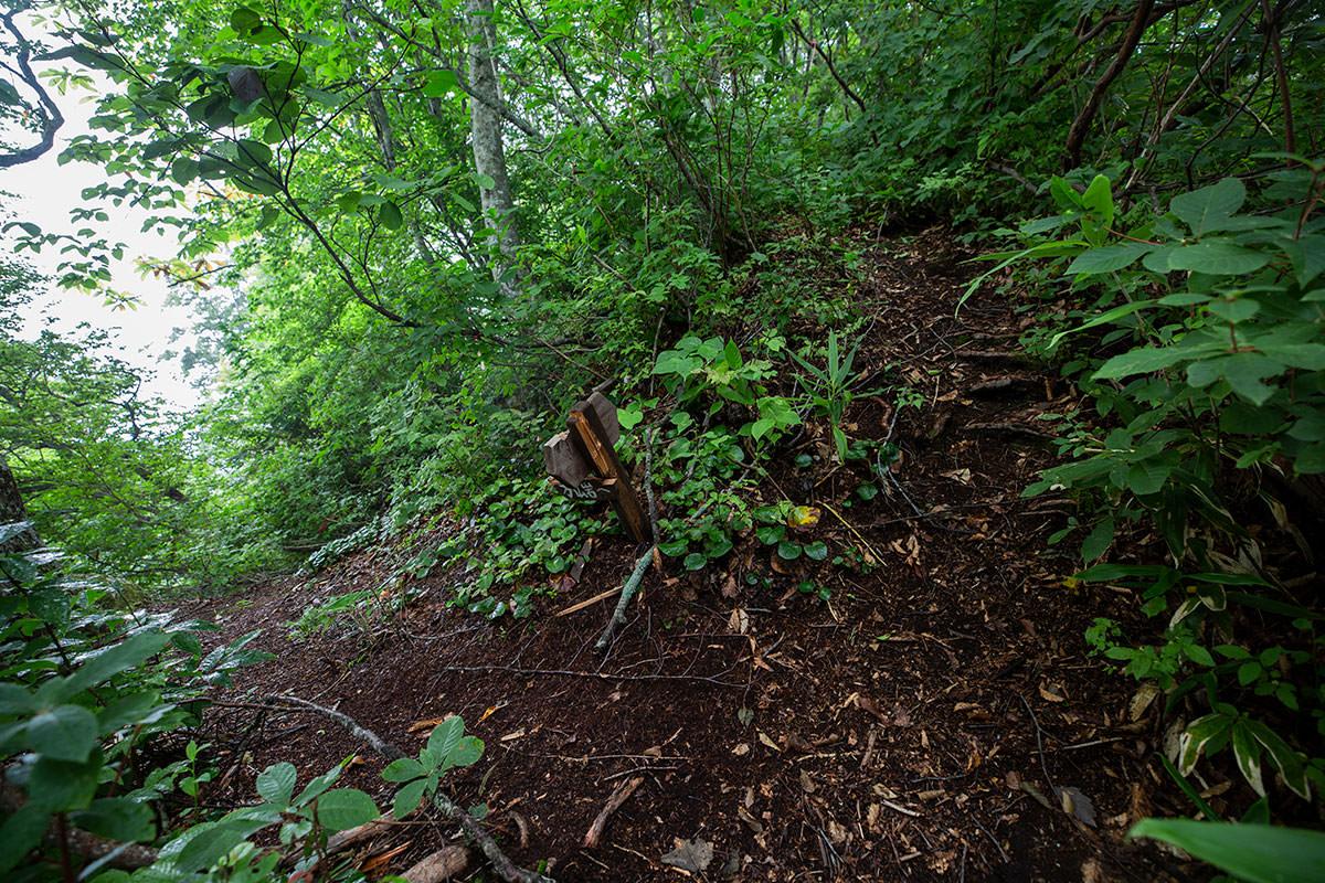 万仏岩からの登山道と合流