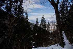 木の間から妙高山が見える