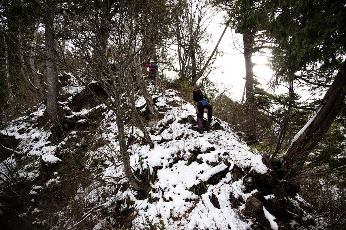細尾根の登山道に変わる