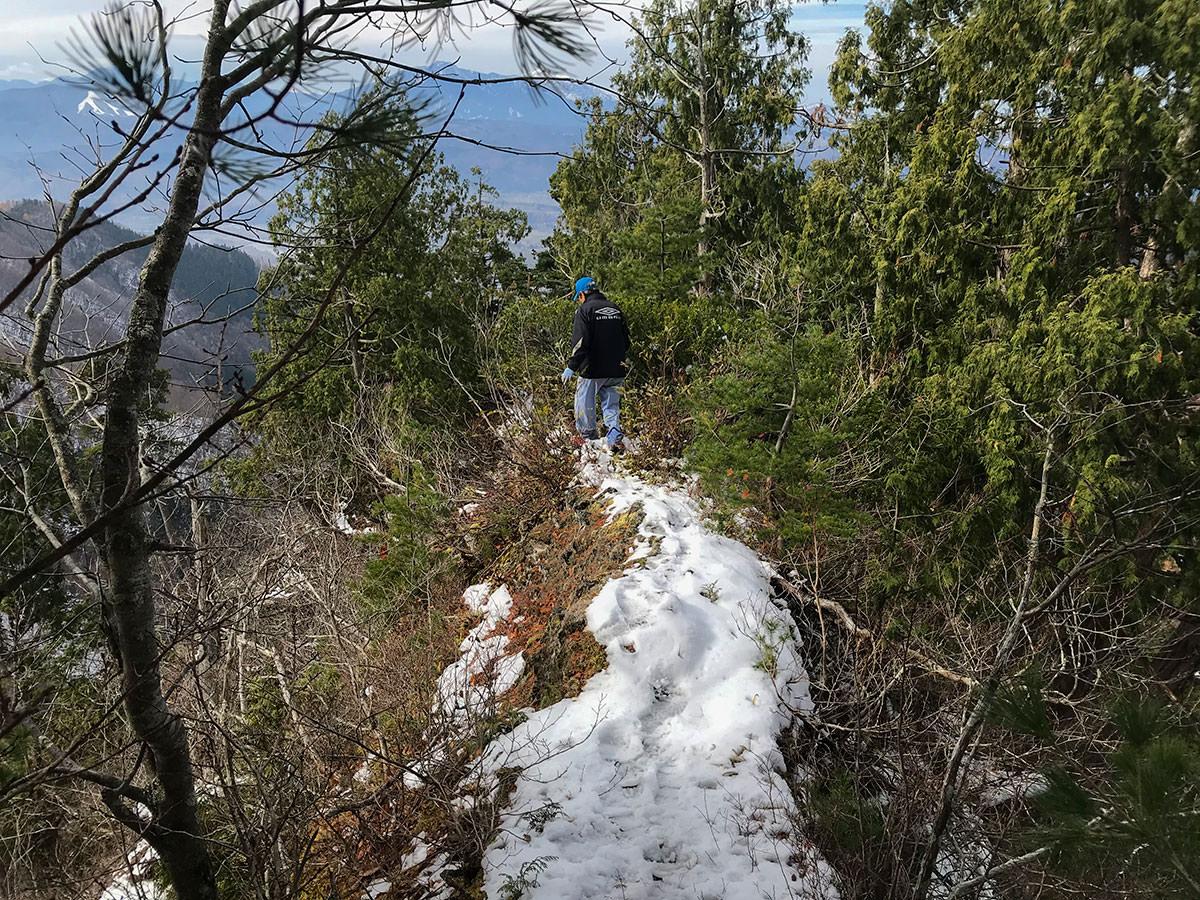 雪のある蟻の塔渡りはスリルもある