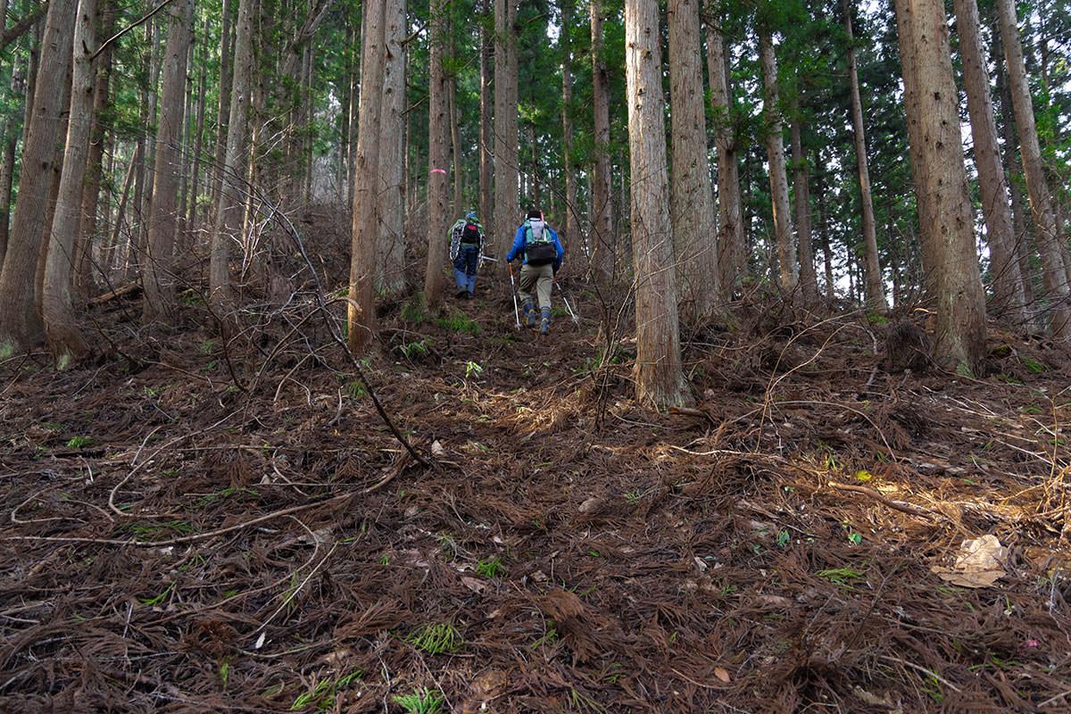 万仏山-尾根的な地形のところを登っていく