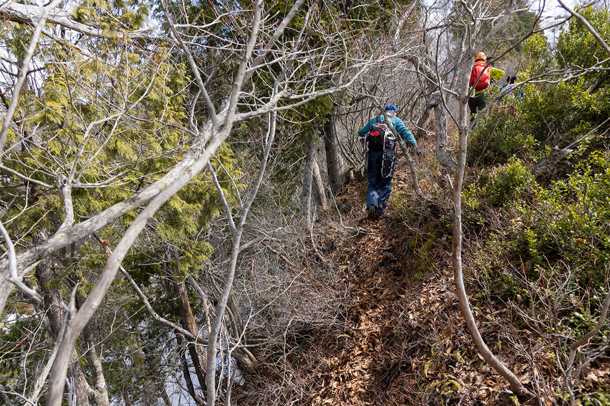 万仏山-尾根の肩に登山道が続く