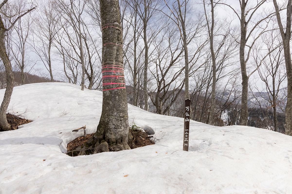 万仏山-山頂の大きな木は象徴的