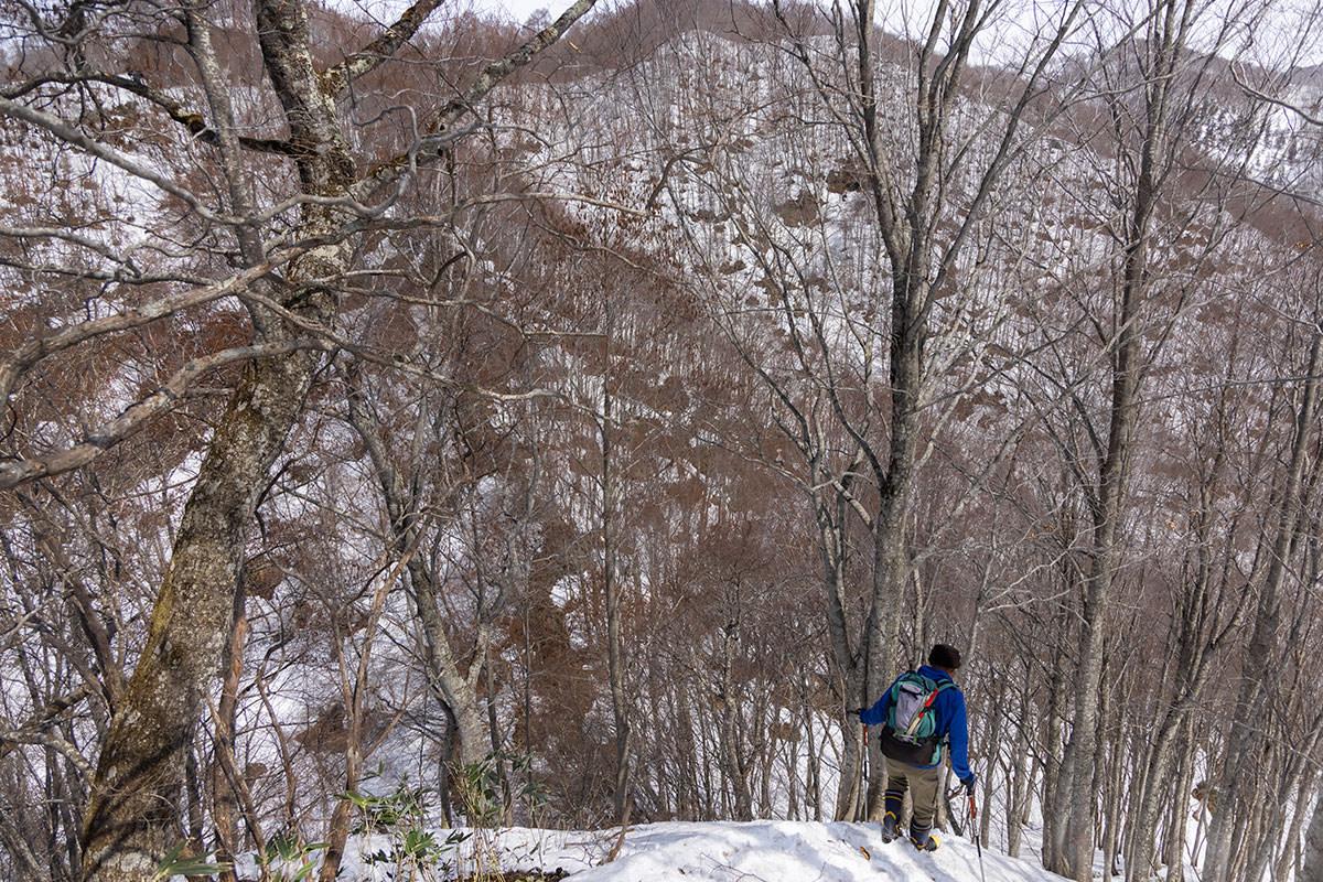 万仏山-北峰を下りる