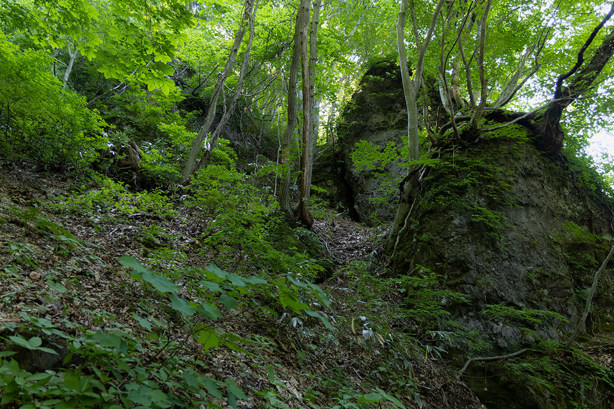 万仏山-見えていた巨石に向かって登っていく