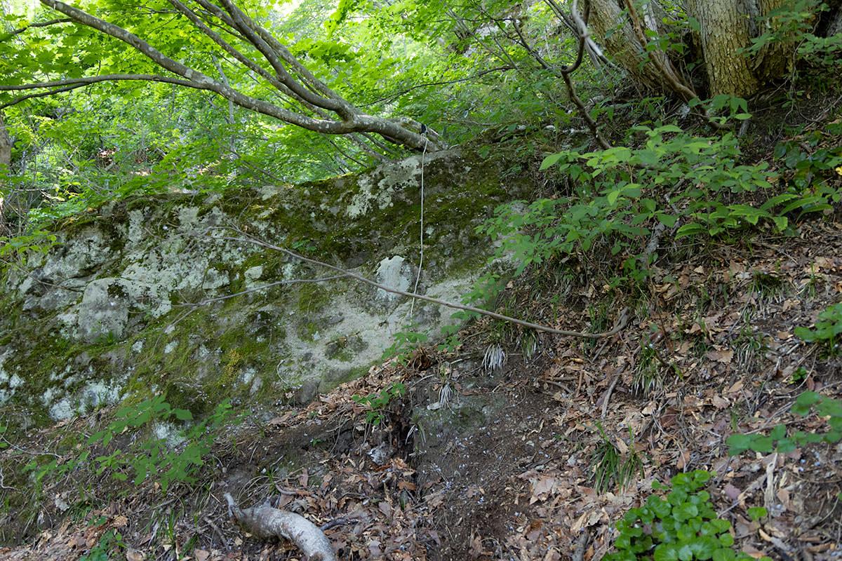 万仏山-巨石を登るとロープ