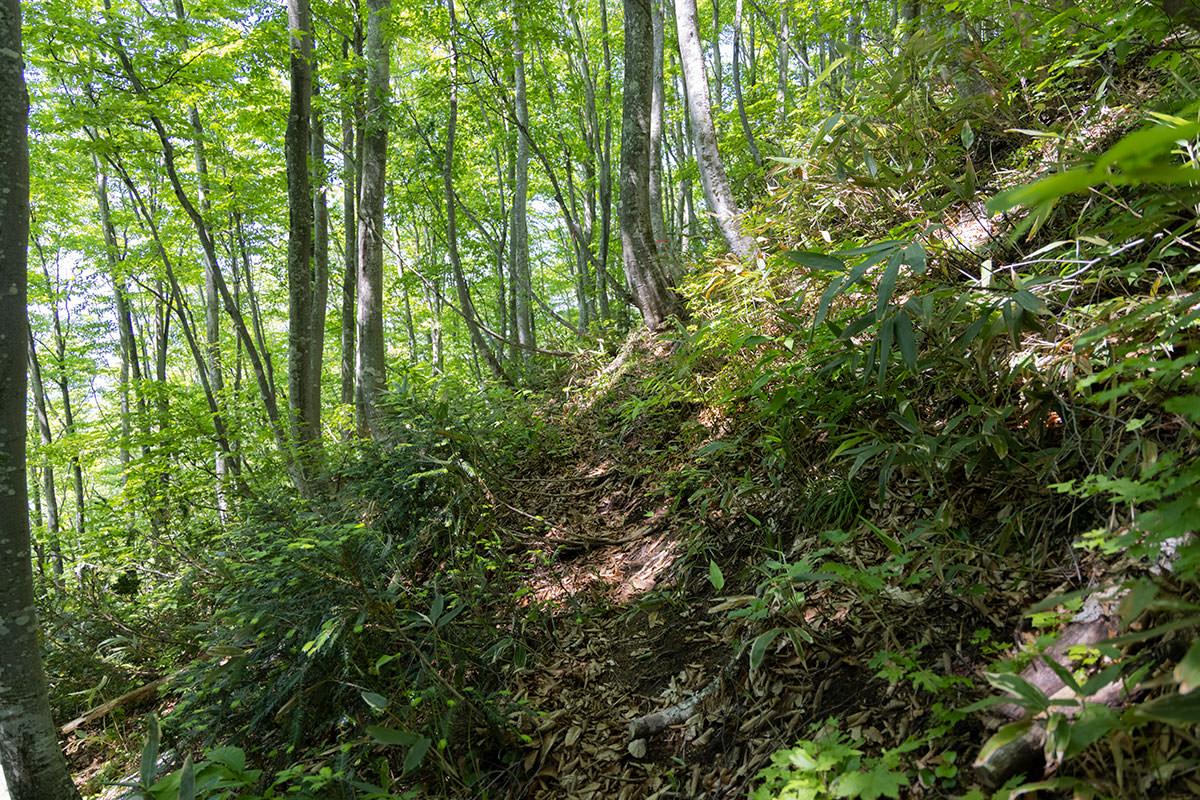 万仏山-斜面をトラバース