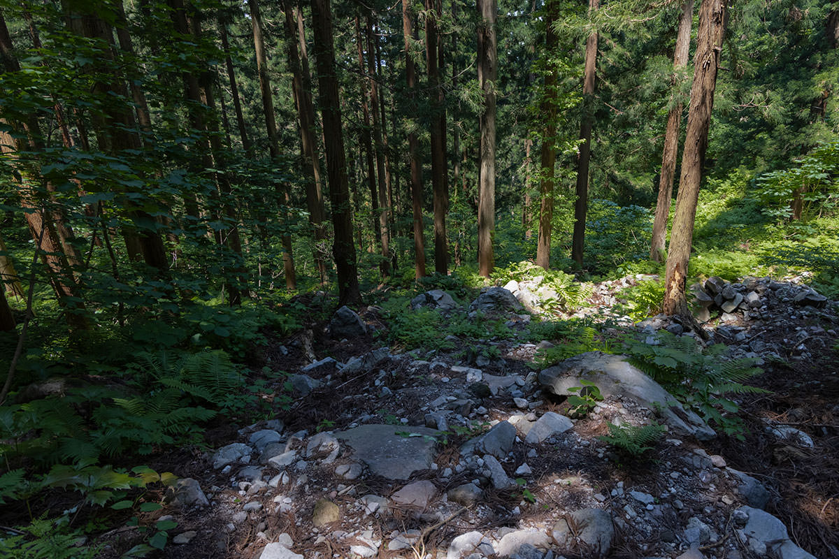 万仏山-広くて歩きやすい登山道を下りる