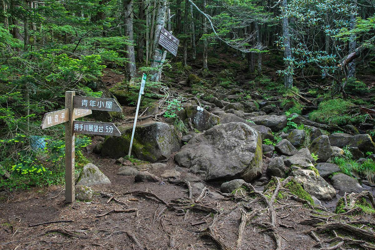 【南八ヶ岳 南北縦走】登山百景-押手川の分岐点
