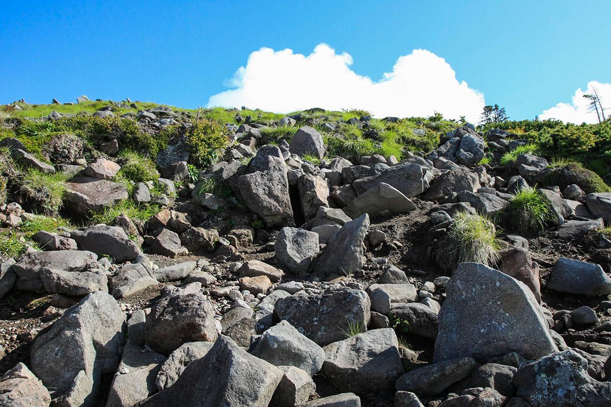 【南八ヶ岳 南北縦走】登山百景-山頂付近は木が無い