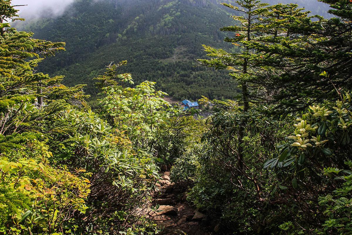 【南八ヶ岳 南北縦走】登山百景-下に青年小屋が見える