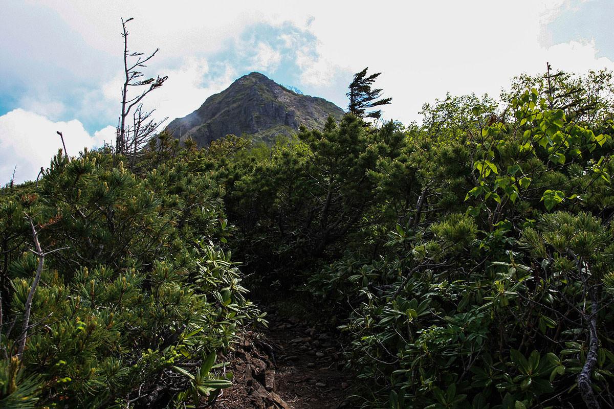 【南八ヶ岳 南北縦走】登山百景-ギボシが見えた