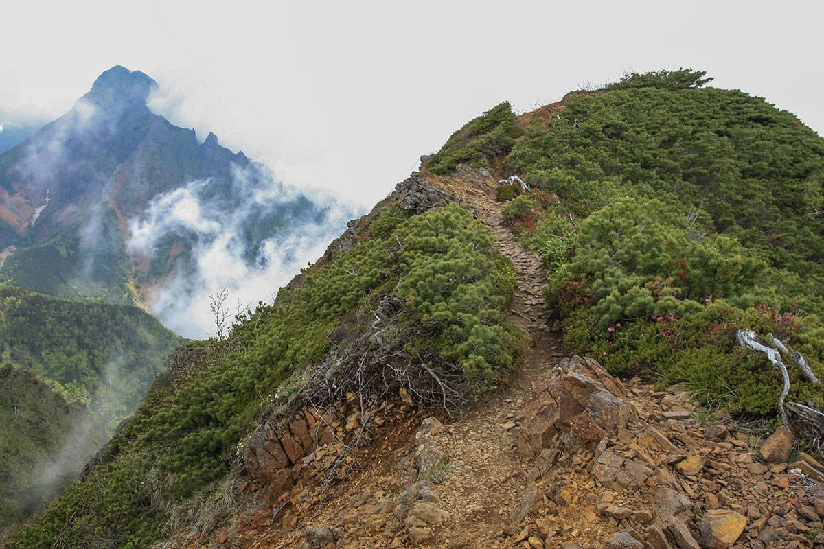 【南八ヶ岳 南北縦走】登山百景-キレットへの尾根
