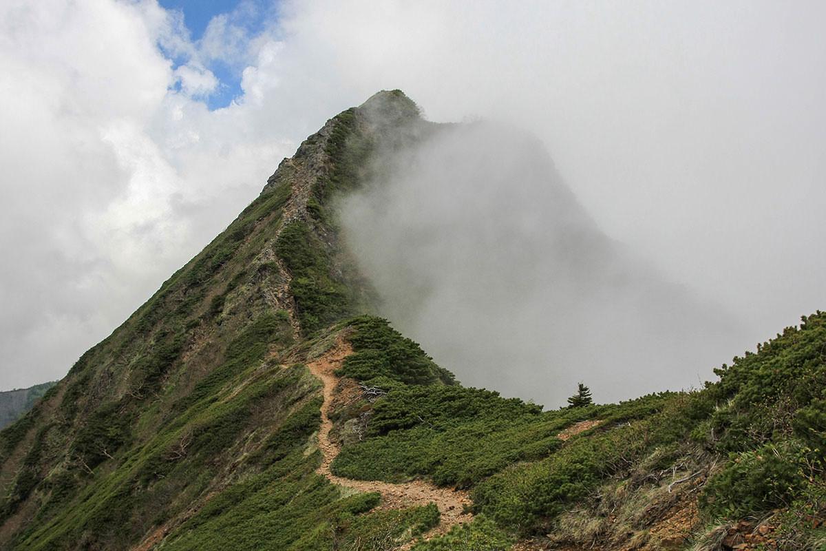 【南八ヶ岳 南北縦走】登山百景-梯子を下りたら旭岳へ