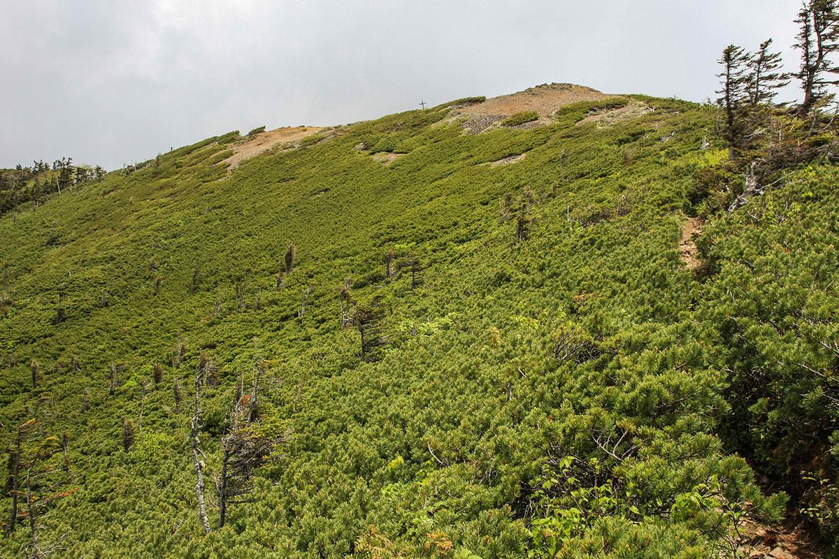 【南八ヶ岳 南北縦走】登山百景-あの丘を越える