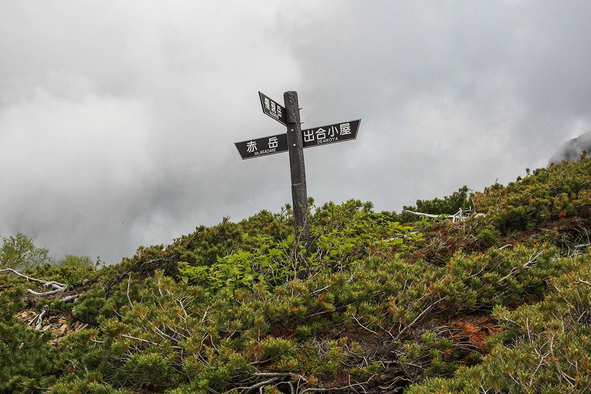 【南八ヶ岳 南北縦走】登山百景-ツルネ東稜との分岐点