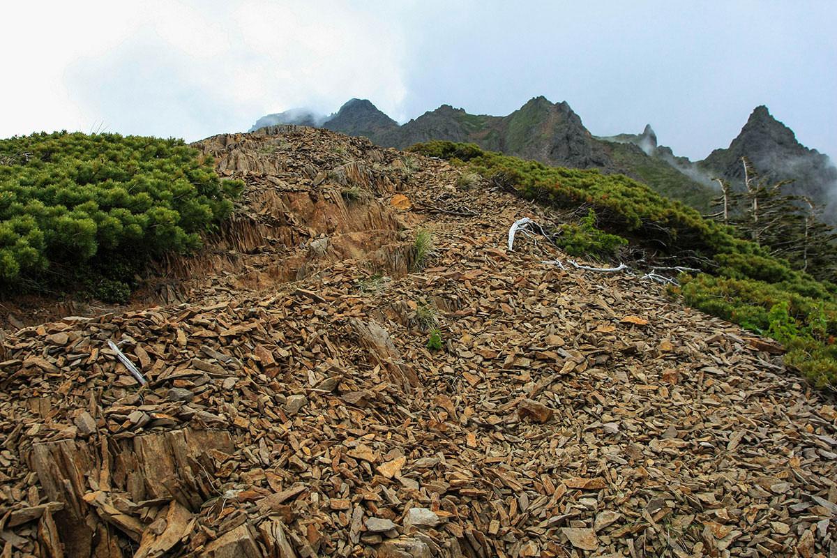 【南八ヶ岳 南北縦走】登山百景-細かな石の登山道