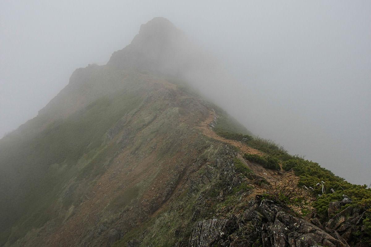 【南八ヶ岳 南北縦走】登山百景-ここでまさかの雨