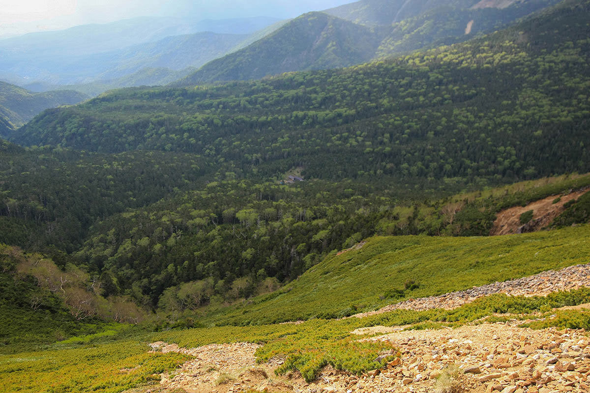 【南八ヶ岳 南北縦走】登山百景-下にオーレン小屋が見える