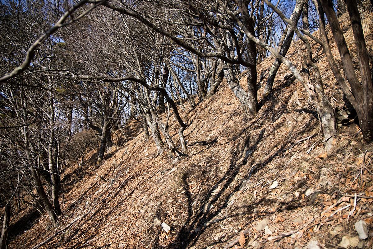 戸谷峰への稜線はすぐそこ