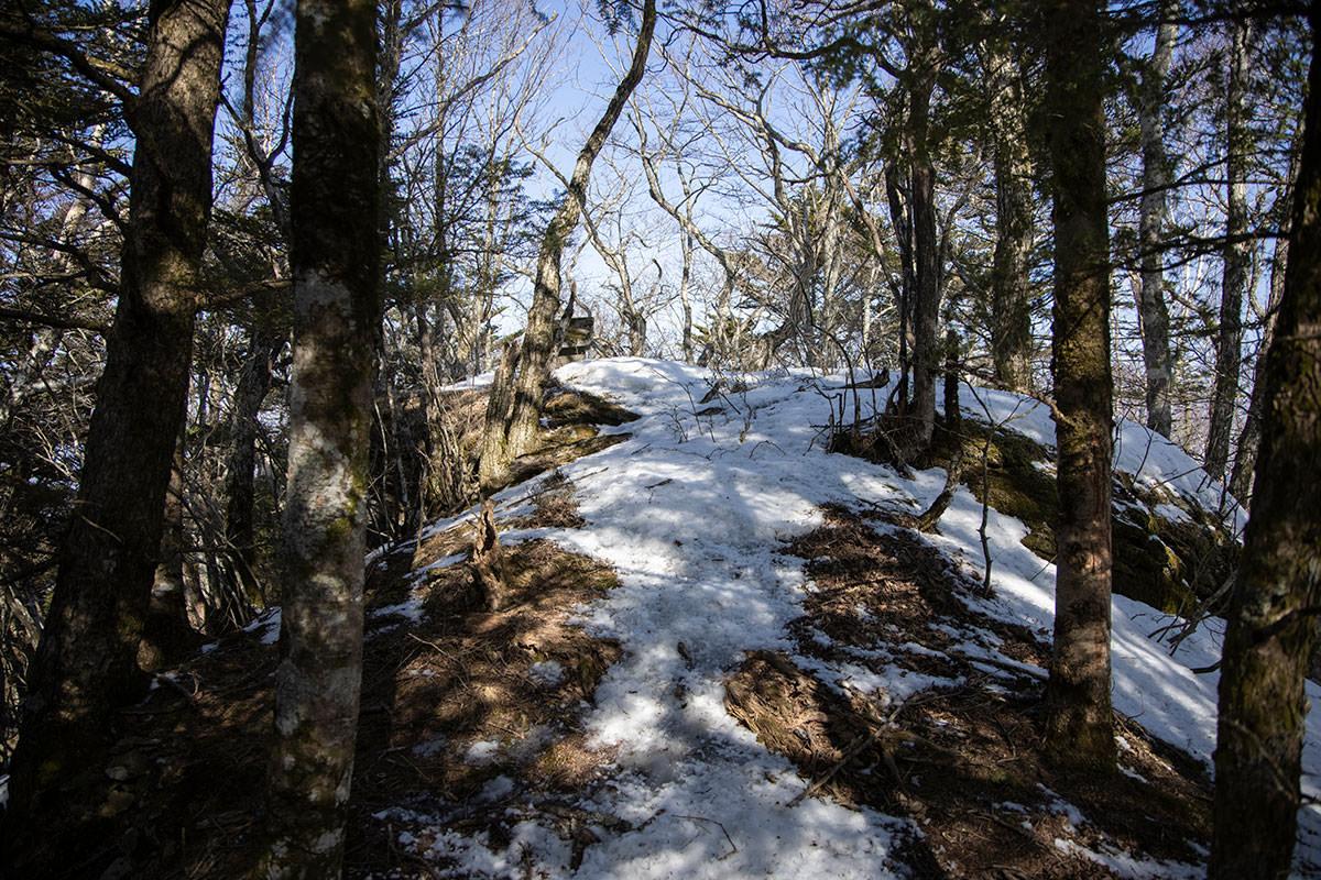戸谷峰から繋がる尾根上には祠が1基