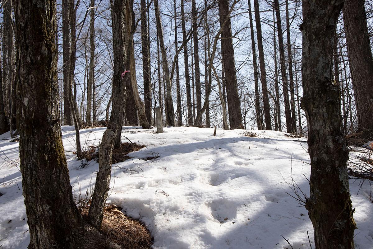次に登った峰には雪が多かった