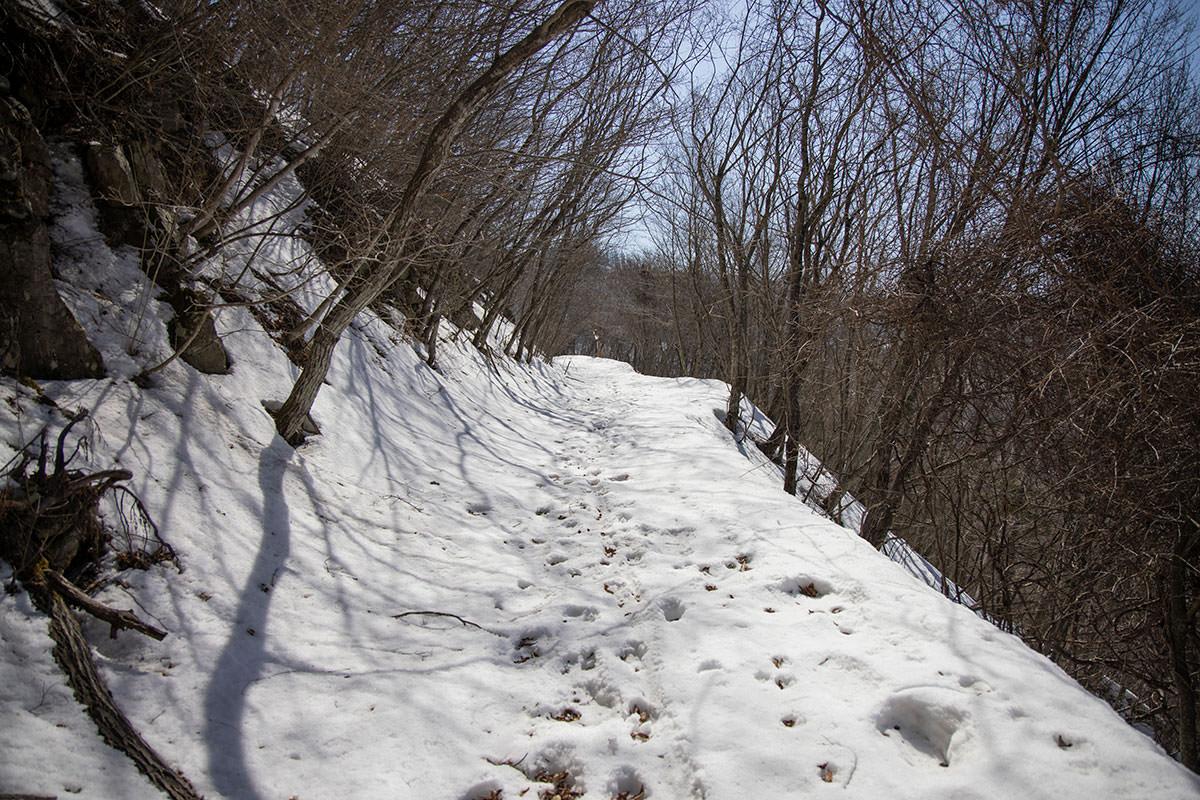 雪の積もった林道は歩きづらい