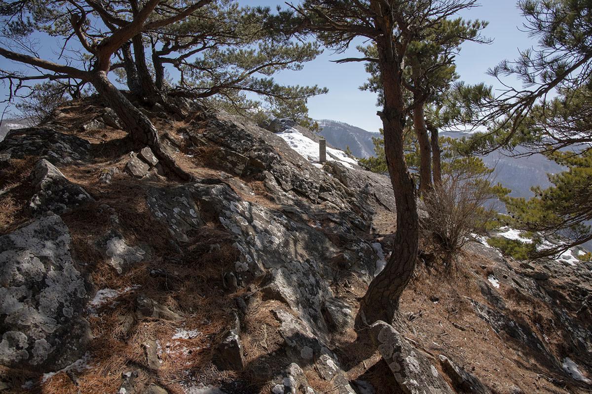 烏帽子岩を見に行く