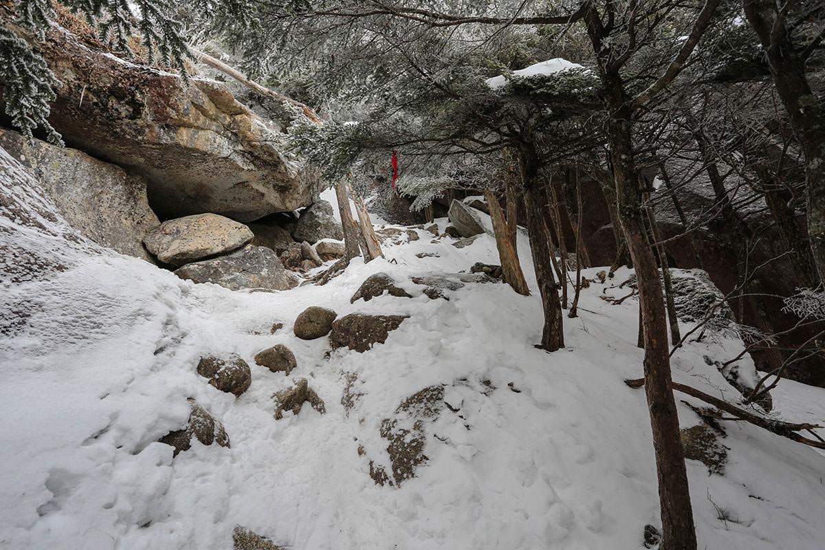 石の上に雪