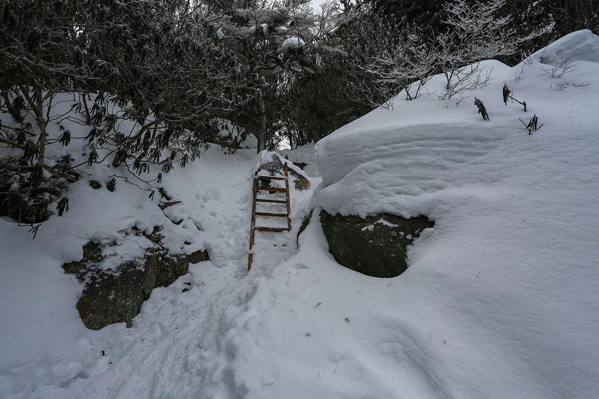 ハシゴの所を登る