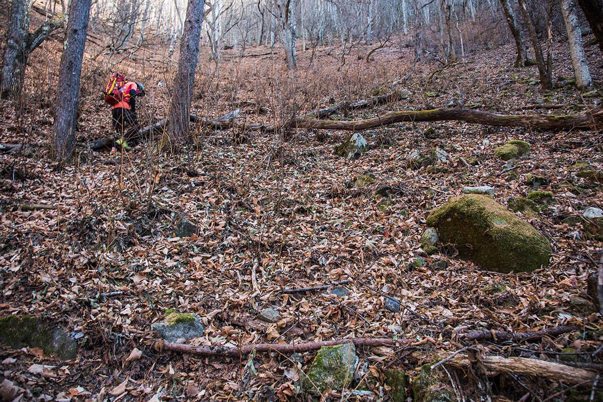 【茂来山】登山百景-落ち葉が積もった急斜面
