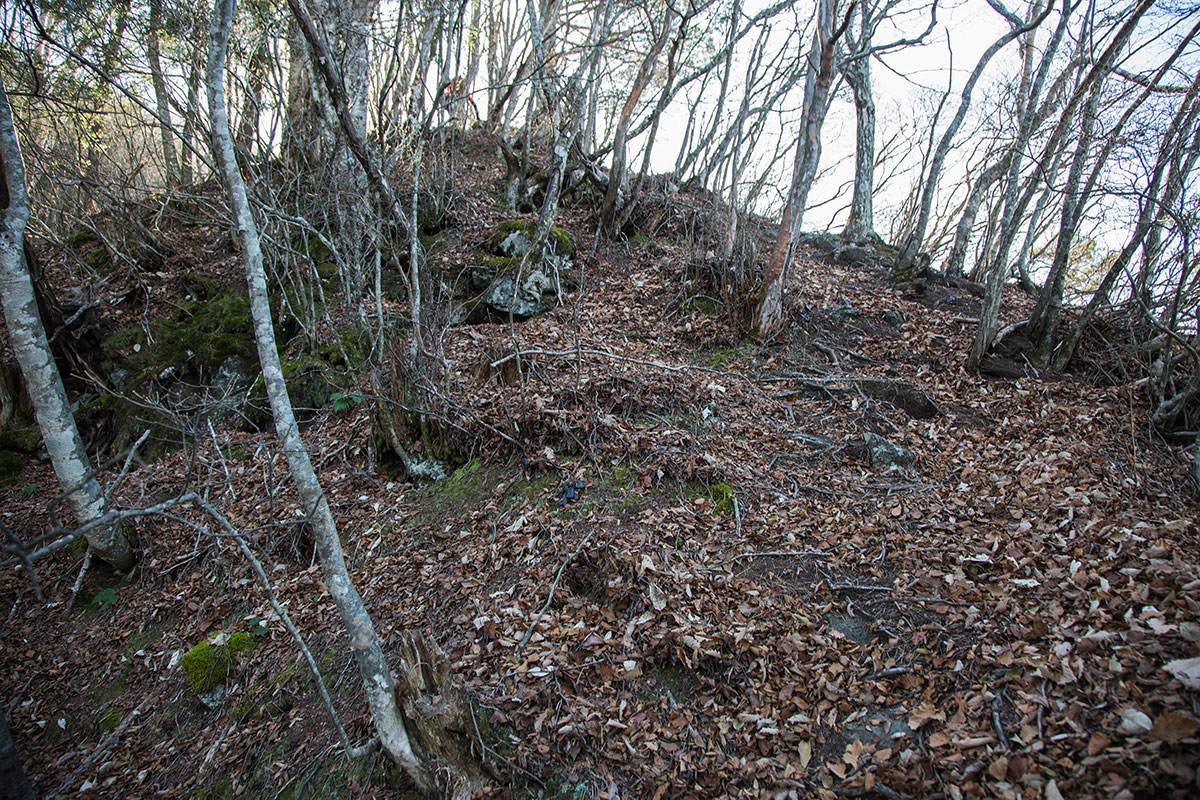 【茂来山】登山百景-急斜面と緩斜面の繰り返し