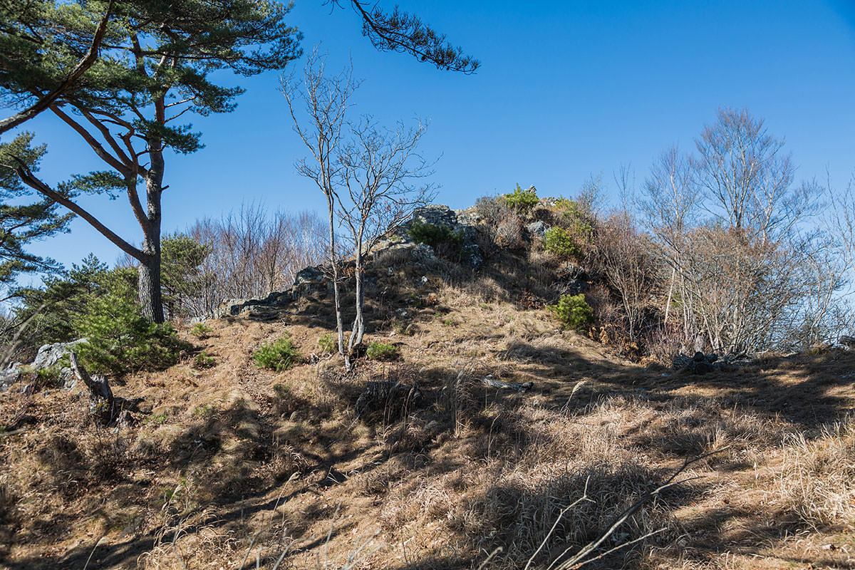 【茂来山】登山百景-反対側から山頂を見る