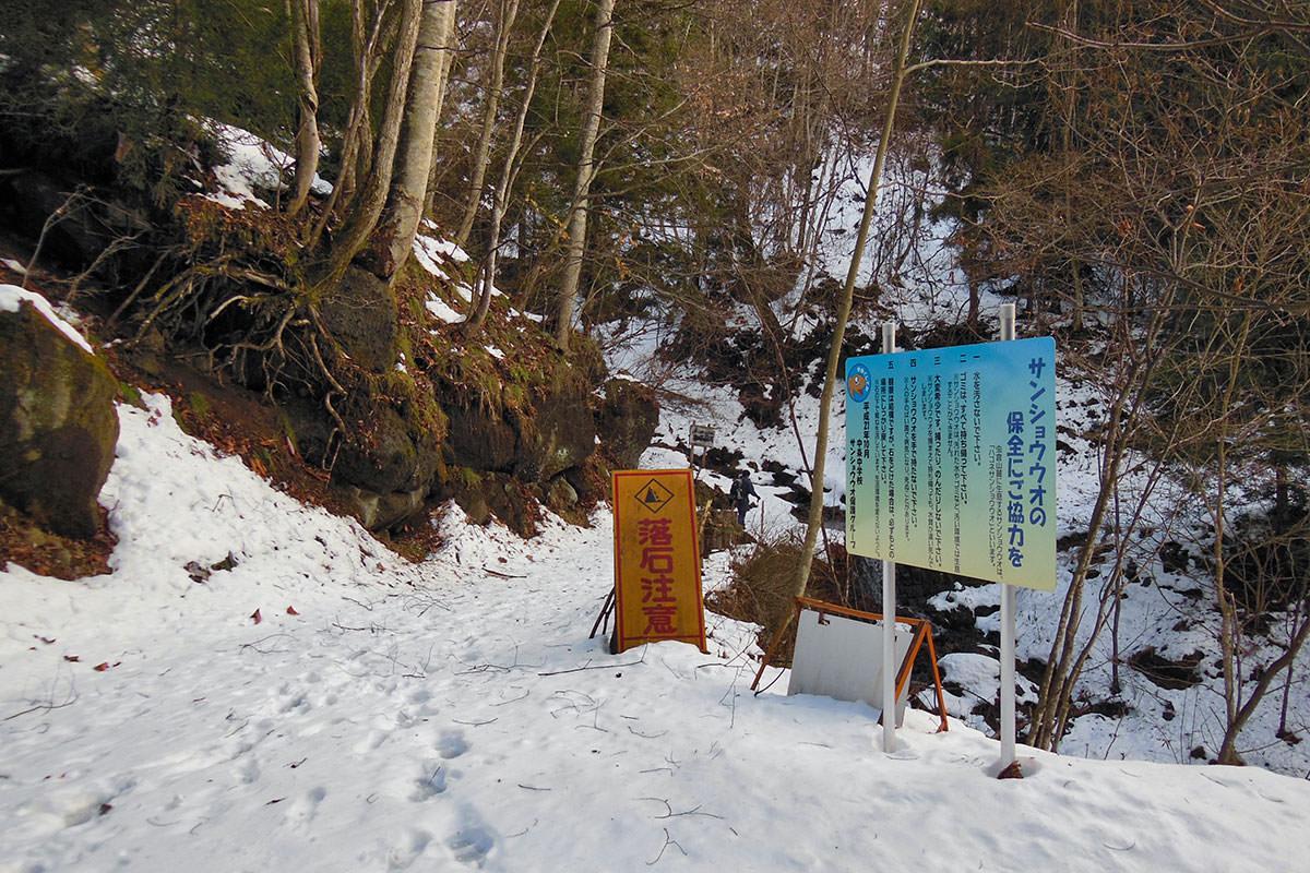【虫倉山 不動滝コース】登山百景-駐車場から雪道