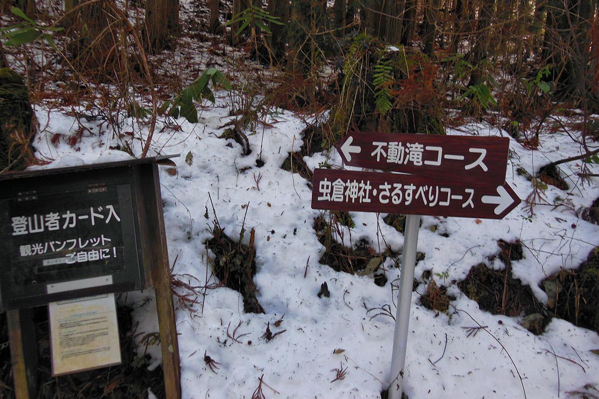 【虫倉山 不動滝コース】登山百景-今日は左へ行く