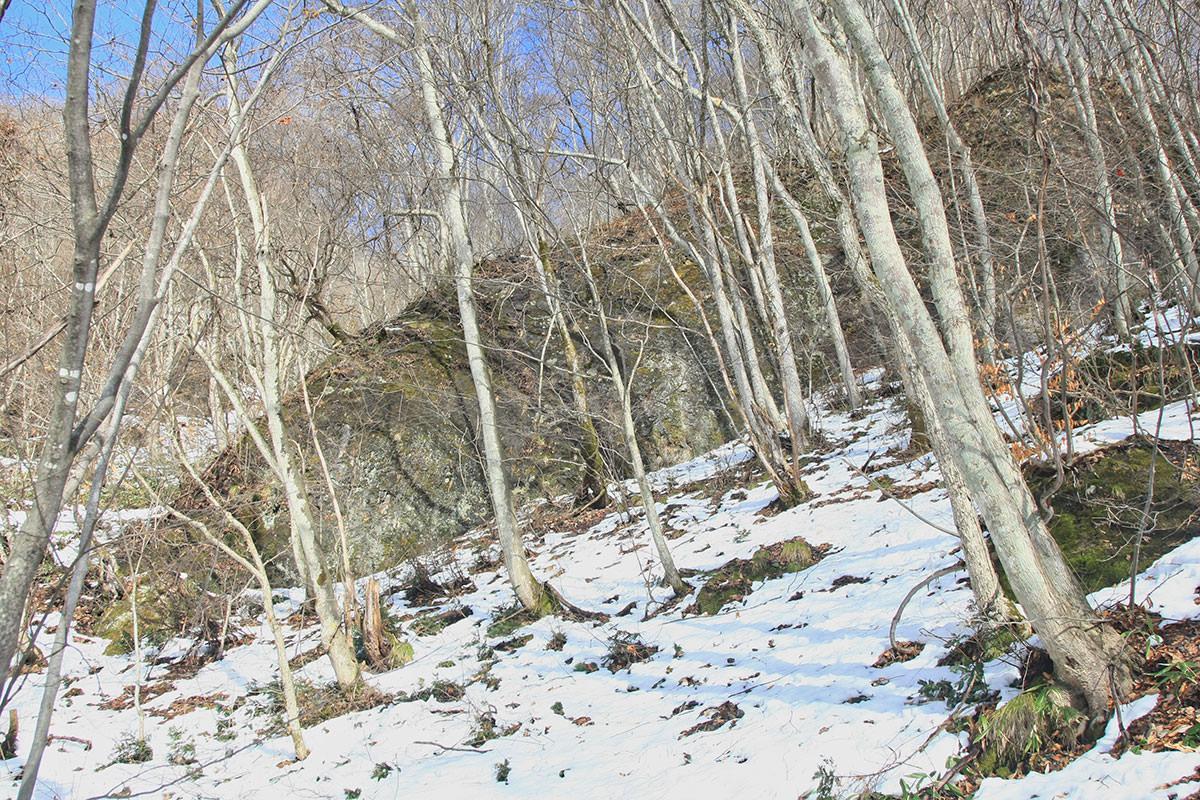 【虫倉山 不動滝コース】登山百景-でっかい石が埋まってる