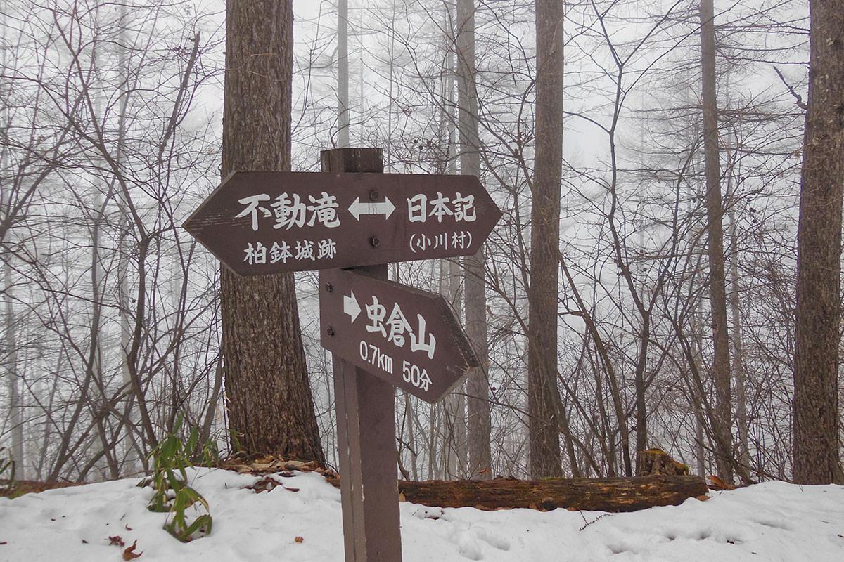 【虫倉山 不動滝コース】登山百景-次の分岐はこっち