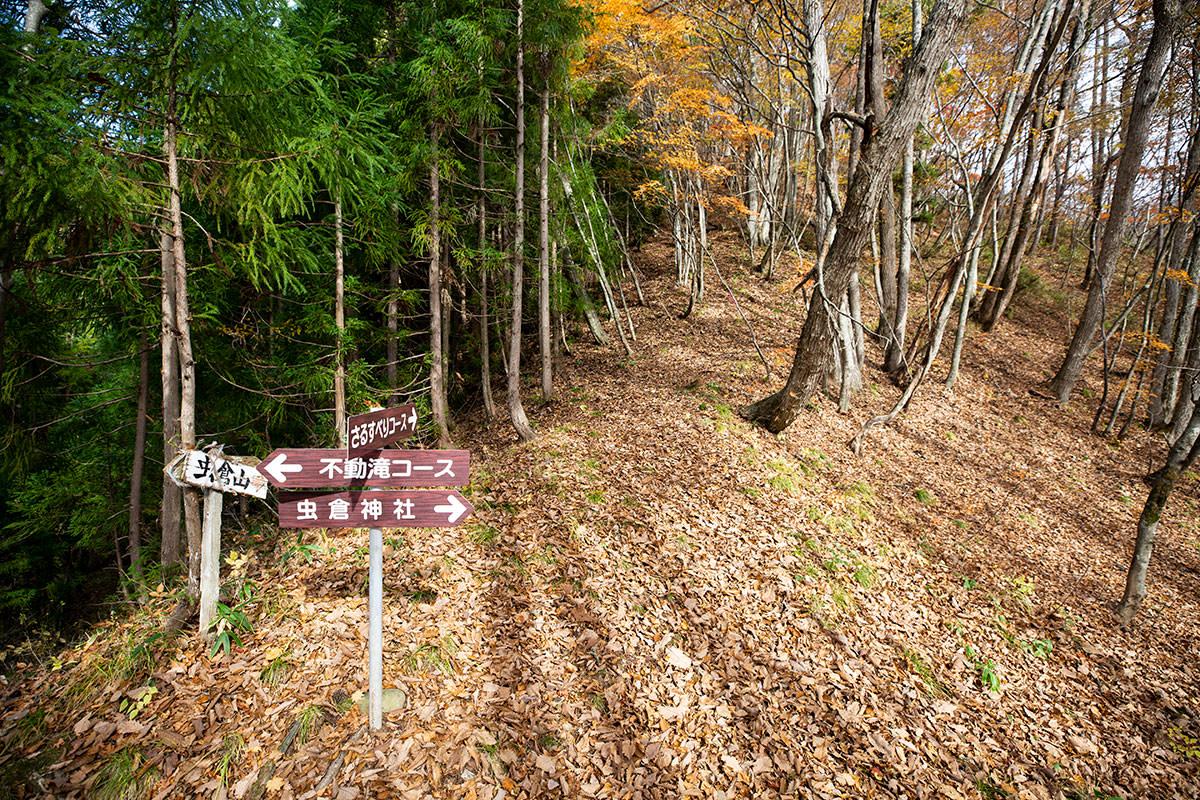 虫倉神社からの登山道と合流