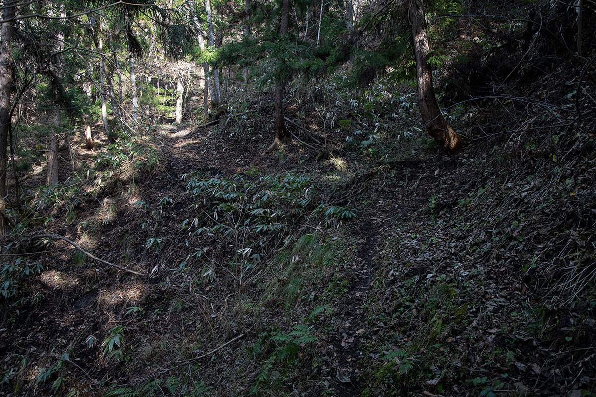 登山道の序盤は急斜面