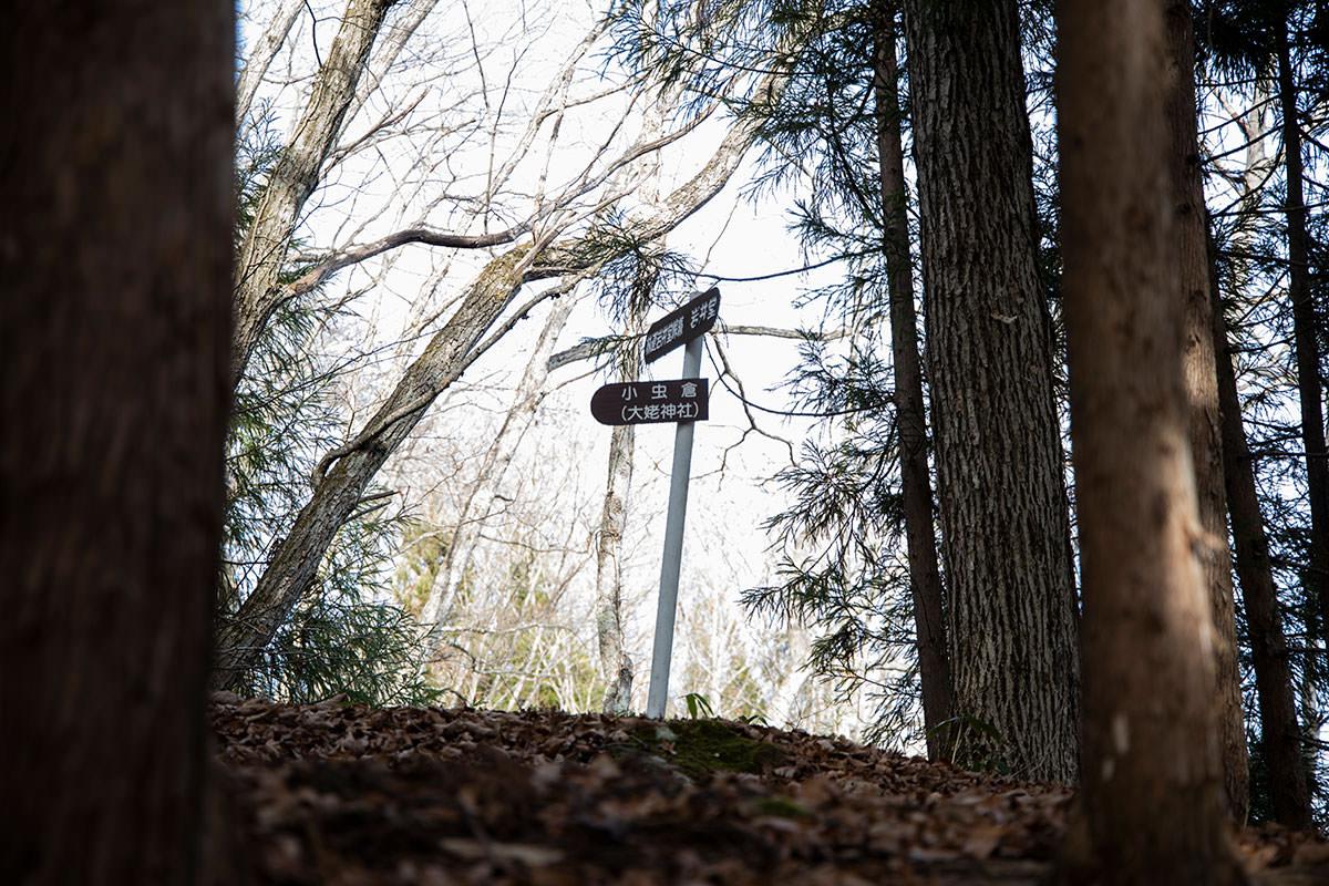 峠からの登山道と合流