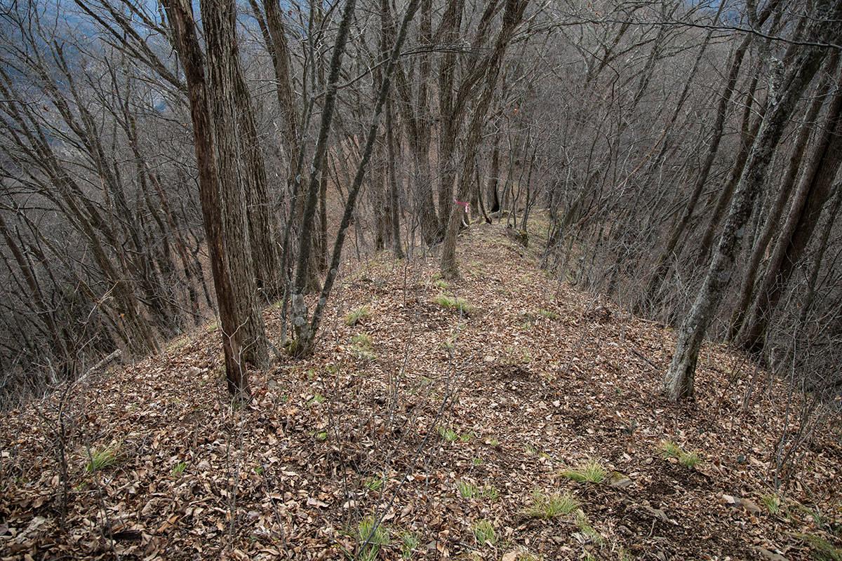 鎖場が終わって落ち葉の急登を下りる