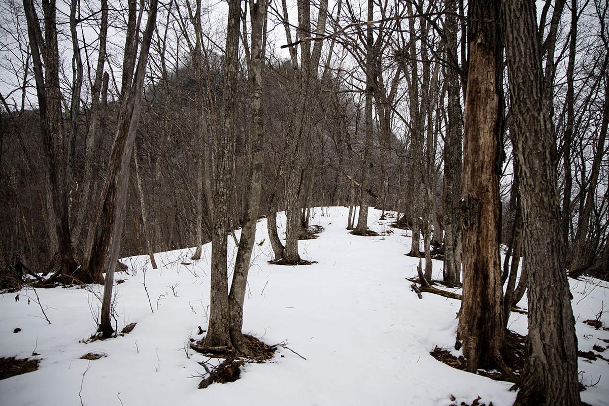 急な斜面を登り切ると雪が少し