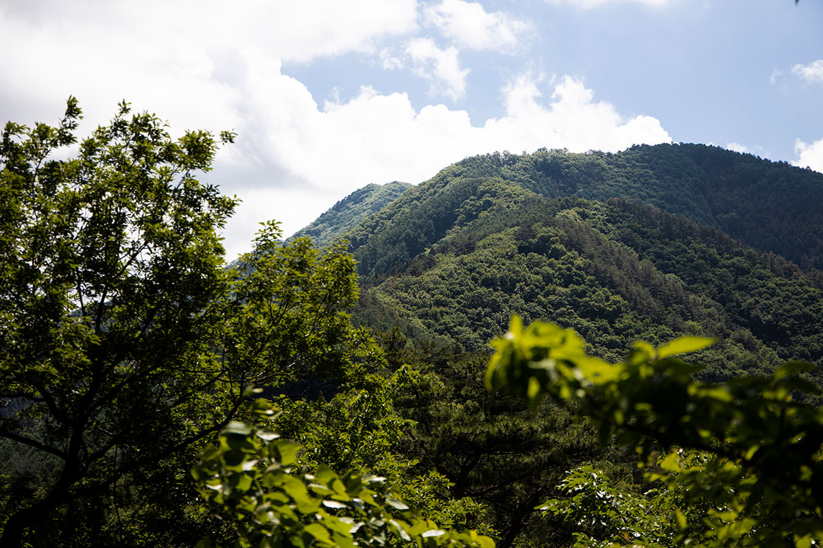 明覚山はあの奥に見えるヤツ