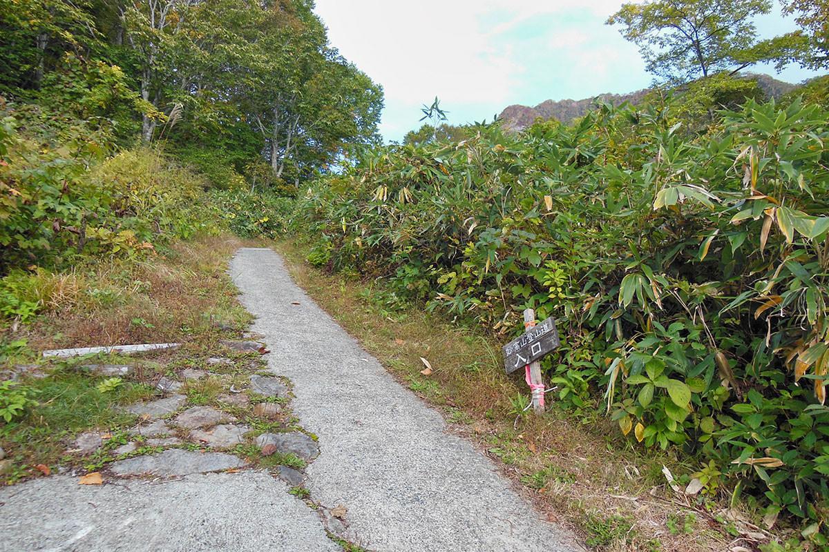 【妙高山】登山百景-少し舗装を歩くと山道に