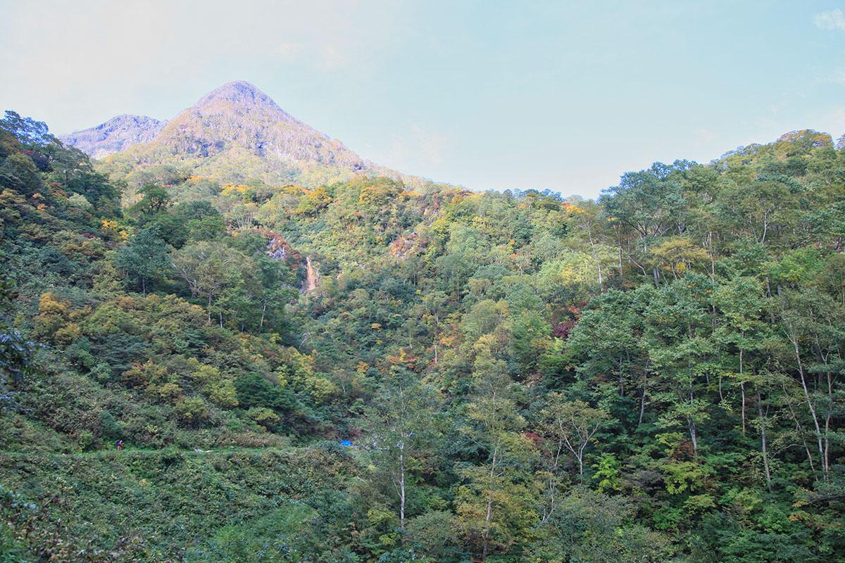 【妙高山】登山百景-山頂はおそらくあの先