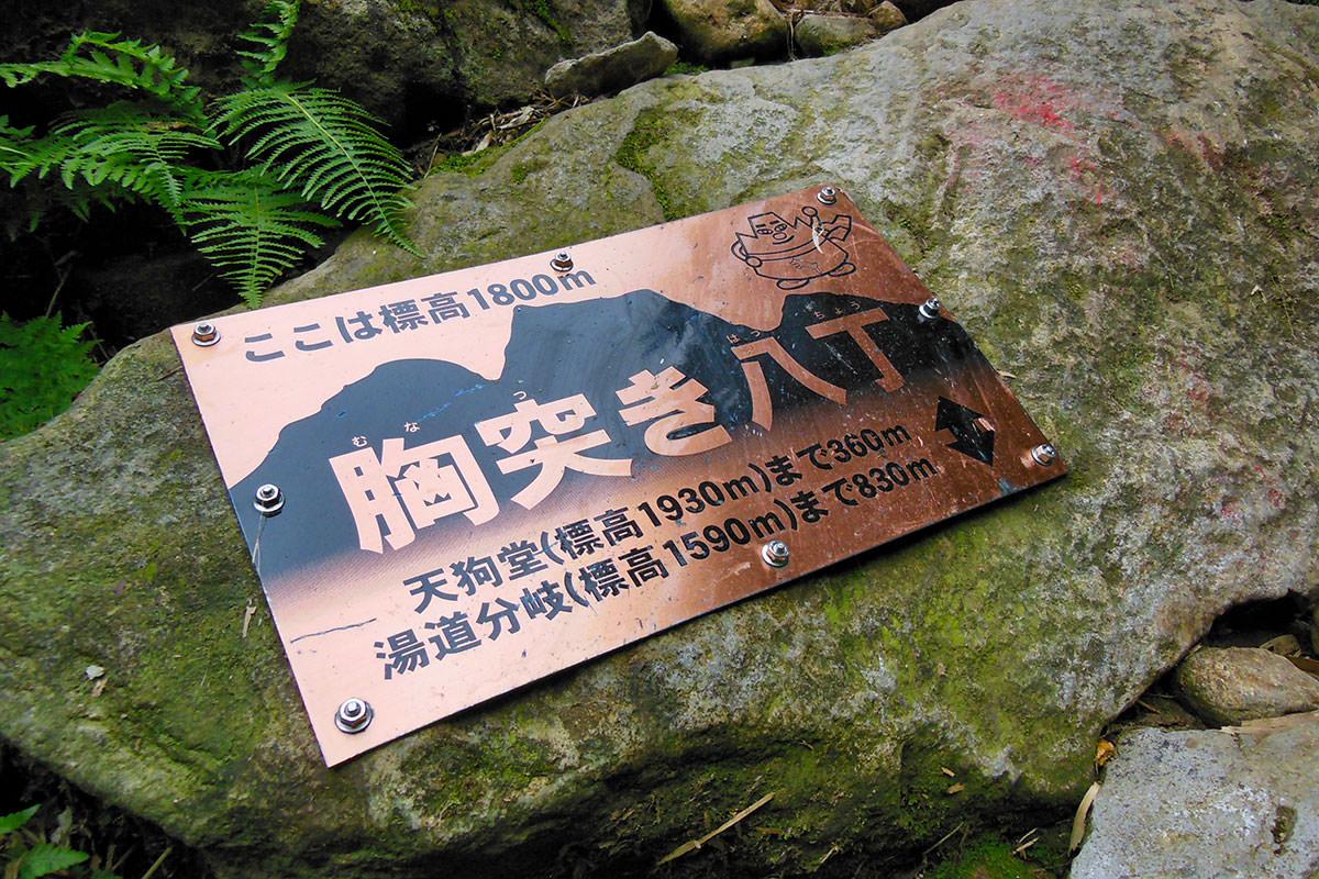 【妙高山】登山百景-銅板が石に打ってある