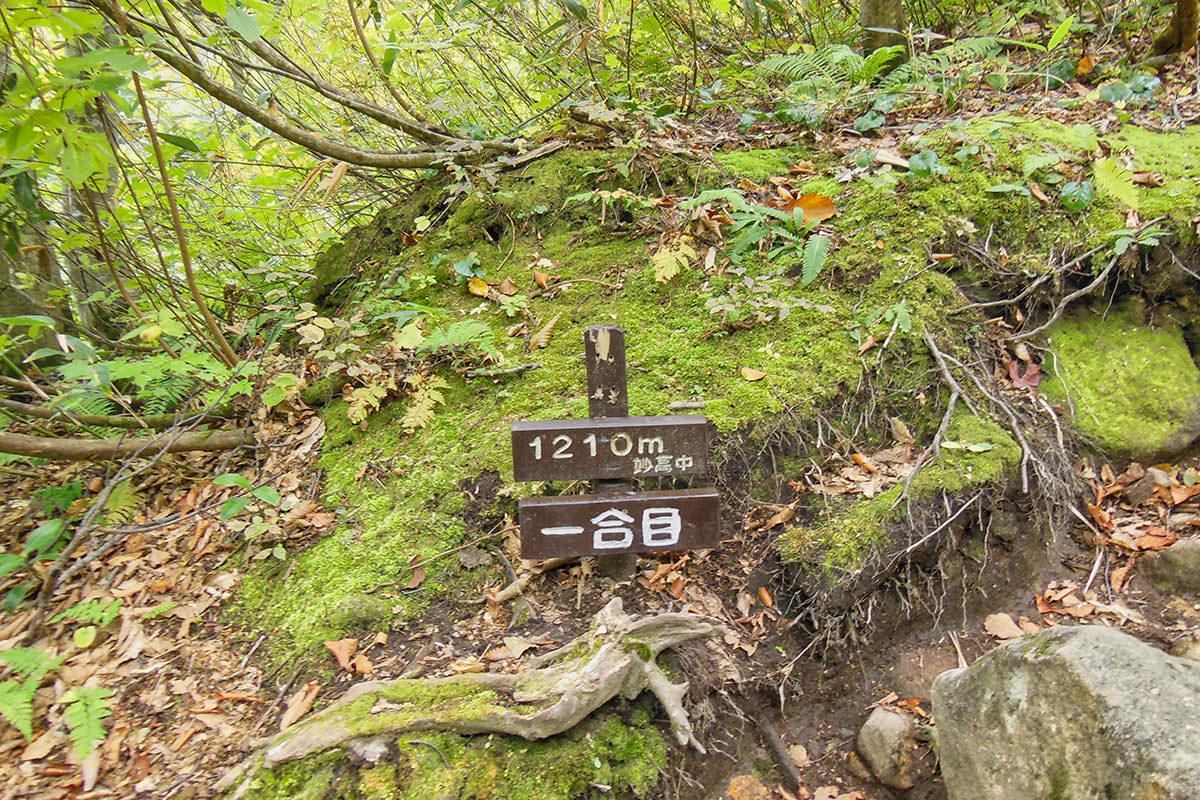 【妙高山】登山百景-下りが長い
