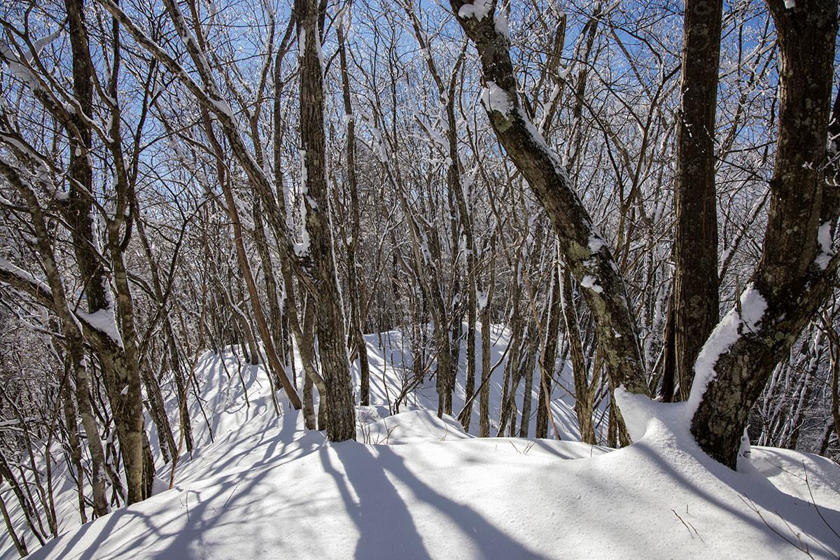 山頂の先からも新雪だった