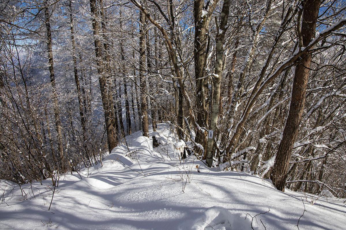 山頂で合流する別の登山道